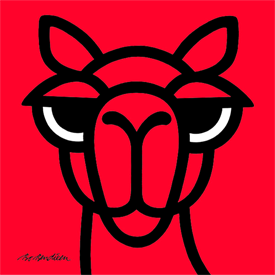 CAMEL RED POSTER </BR> 90 x 90 cm